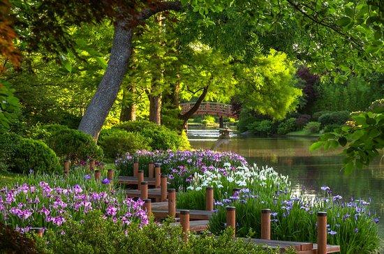 Billet d'entrée au jardin botanique...