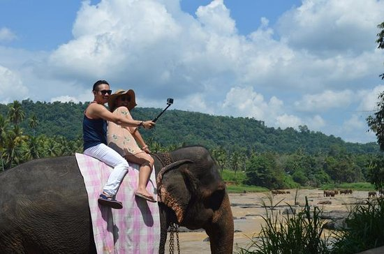 Celebrate Christmas in Sri Lanka - 06...