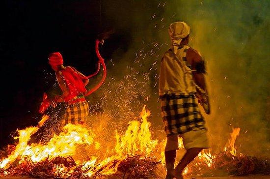 Bali Kecak Fire Dance Full-Day Tour...