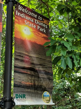 Indiana Dunes State Park: IMG_20180827_125811_large.jpg