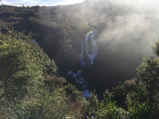 Foto de Waikato Region