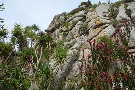 la rocaille - Picture of Jardin Exotique et Botanique de ...