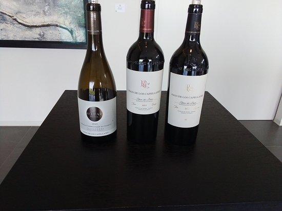 Pedrosa de Duero, Španělsko: Vinos que compusieron la cata