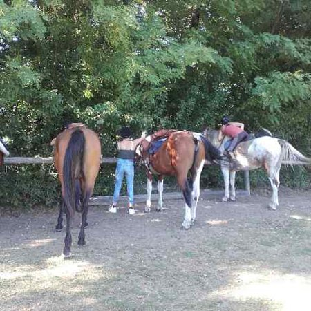 Centre Equestre des Bauges