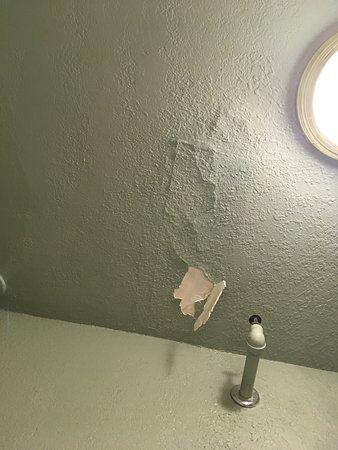 bathroom ceiling.