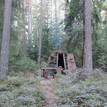 STF Kolarbyn Eco-Lodge Bild