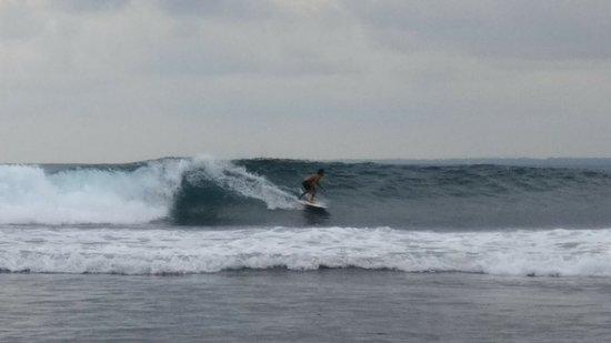 Tanjung Setia Beach: 1535461904562_large.jpg