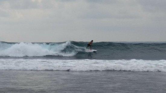 Tanjung Setia Beach: 1535461897572_large.jpg