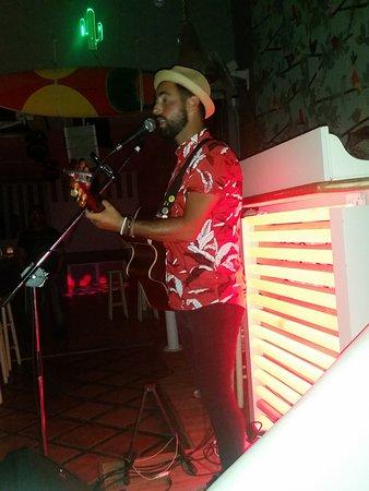 Albatross Beach Bar Club: live music