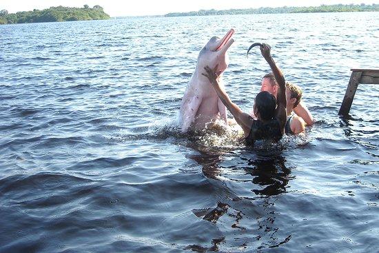 Amazonas Pirangueiros Tours