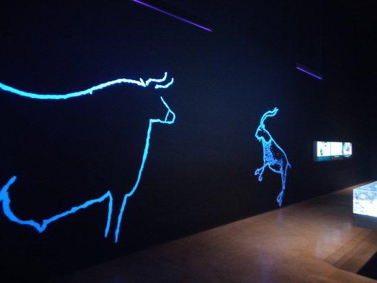 Museu da Fundação do Côa: Museu da Fundacao do Coa