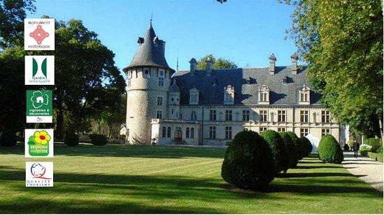 Chateau de Montigny-Sur-Aube