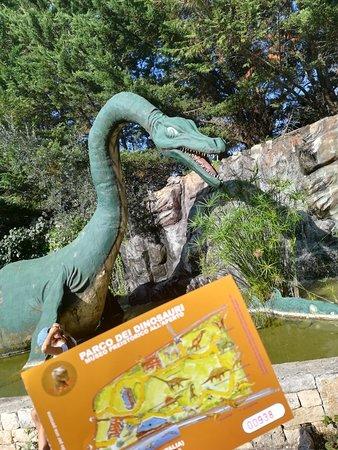 Il Parco dei dinosauri: IMG_20180828_163805_large.jpg