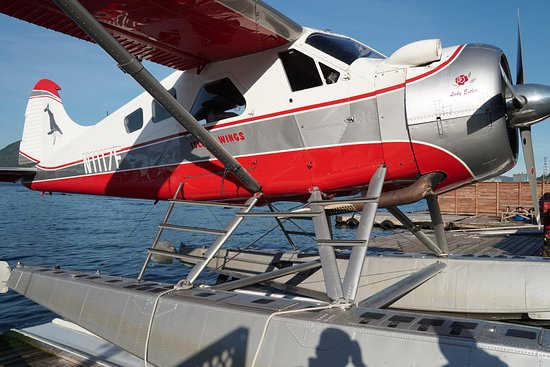 Mountain Air Service Ketchikan 2019 All You Need To
