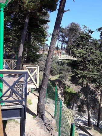 Parque Municipal de Luisa Sebire