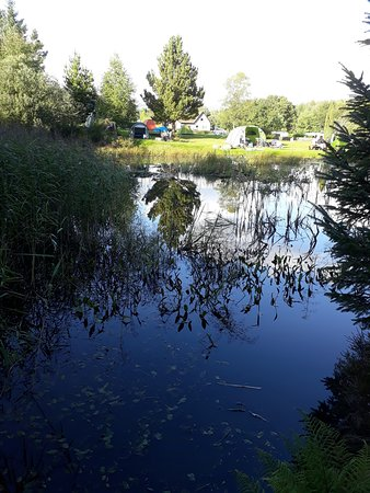 Glentrool Camping and Caravan Site: Standing on the walking path at the edge of the site