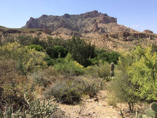 Boyce Thompson Arboretum: A view from the northern trail.