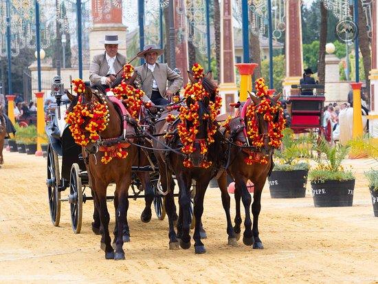 Feria del Caballo: Carruajes llenos de luz y color y gente guapa