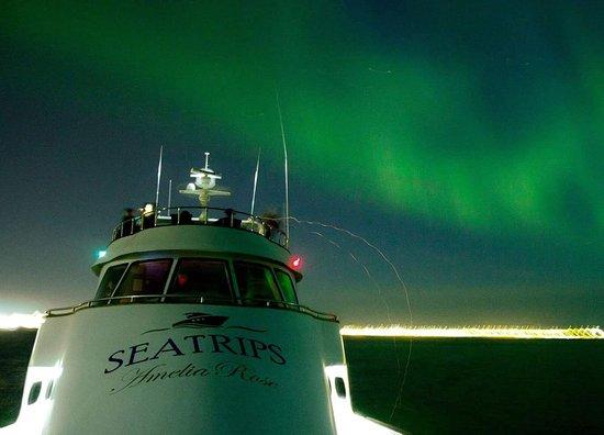 Sea Trips Reykjavik
