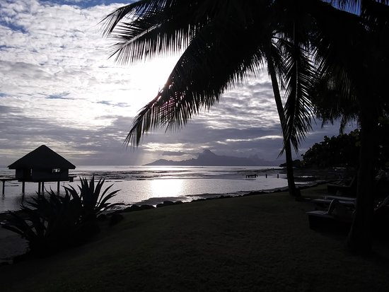View Of Moorea At Sunset On Beach Of Hotel Picture Of