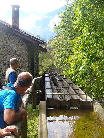 Lozzo di Cadore, Italy: Particolare di un mulino