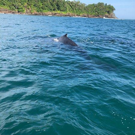 San Jose Island, Panama: photo5.jpg