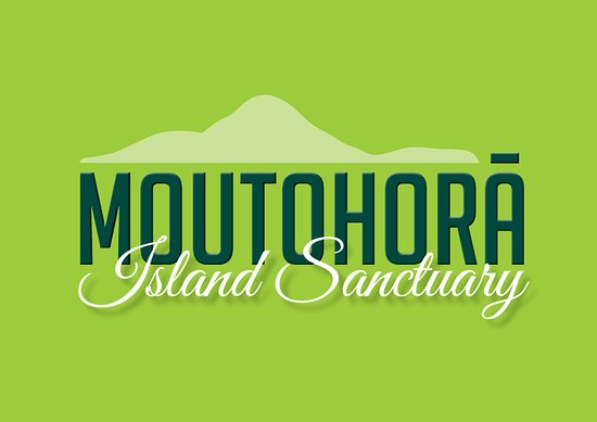Moutohora Island Sanctuary (Whale Island) - Day Tour