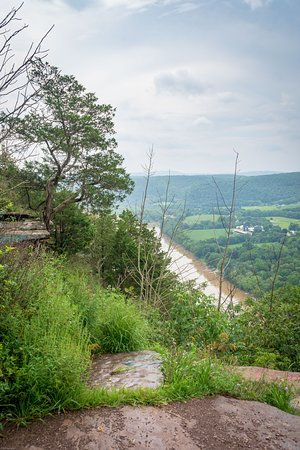 Wyalusing, เพนซิลเวเนีย: Tree and vegetation and east view