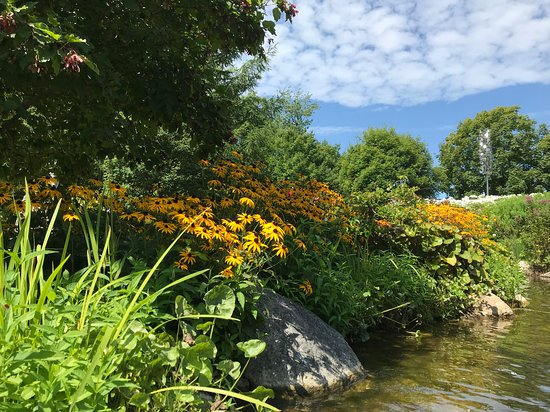 Coastal Maine Botanical Gardens: Scene from the guided tour