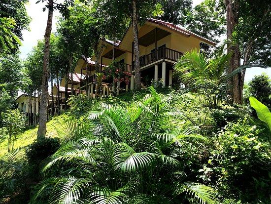 Khao Sok River Home Resort