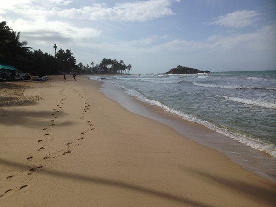 Mirissa Beach Photo