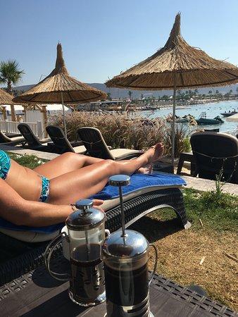 A luxurious true 5 star beach resort hotel with amazing food!