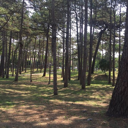Parco Hemingway : photo0.jpg