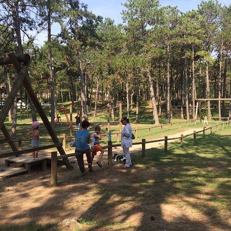 Parco Hemingway : photo1.jpg