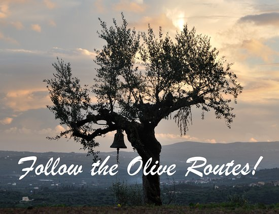 The Olive Routes