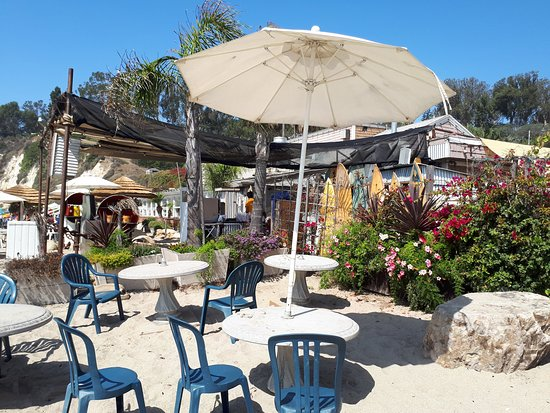 Paradise Cove Beach Cafe: loved the surf boards