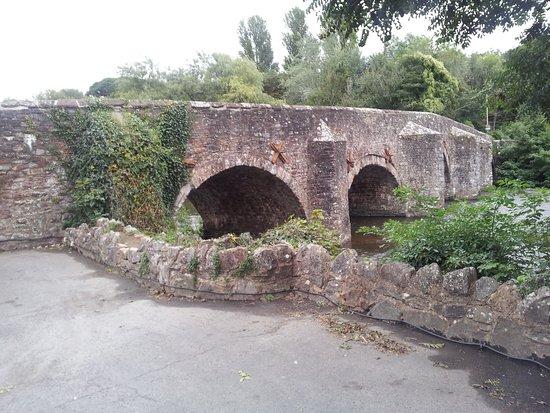 Bickleigh, UK: 20180827_184920_large.jpg