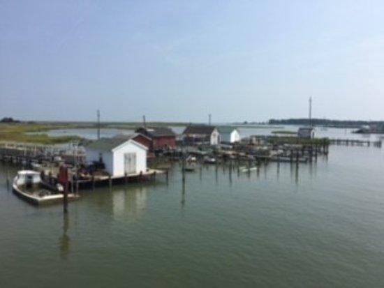 Reedville, VA: Crab businesses