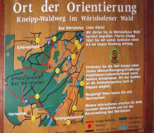 Kneipp Waldweg
