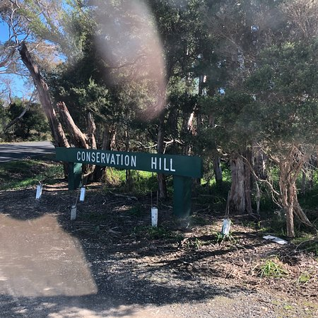 Conservation Hill Reserve