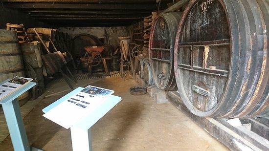 MUSEE DE LA CHALOSSE照片