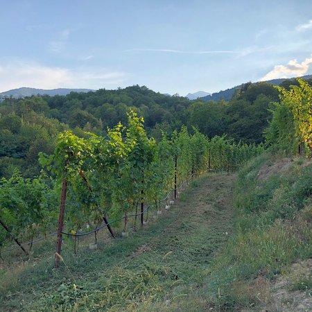 Bagnolo Piemonte, Italie: photo1.jpg