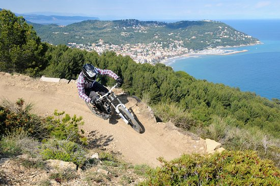 TF7 Action Sport: Downhill Antenne Trail