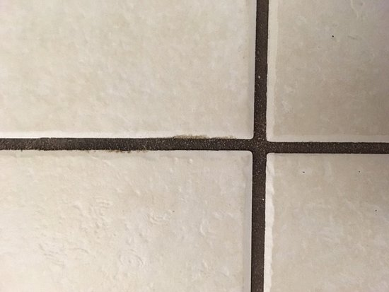 Pompano Beach Club: FILTHY grout most of the bathroom.