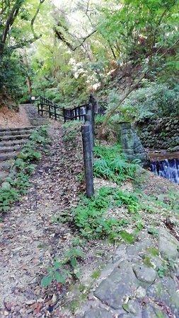 Tsukinowa Falls