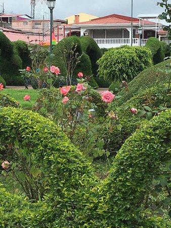 Zarcero, كوستاريكا: Senor Scissorhands Topiary