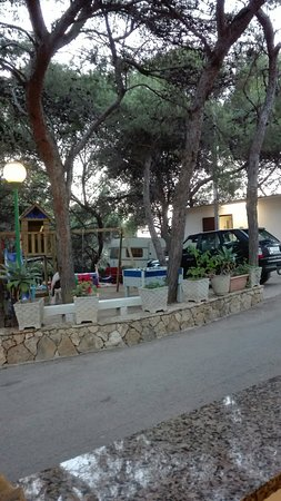 Camping Internazionale Nettuno Photo