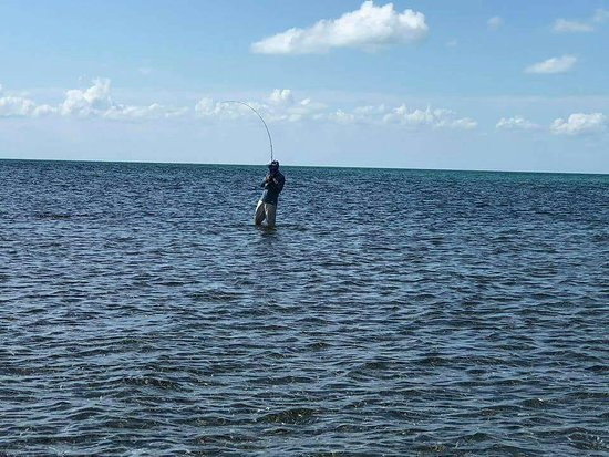 Caye Caulker, Belize : Fly fishing and deep sea fishing
