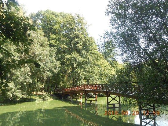 Martonvasar, Ungheria: Híd a szigetre.