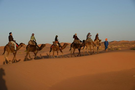 Ouirgane, Morocco: Moroccan Desert - Camel Caravan